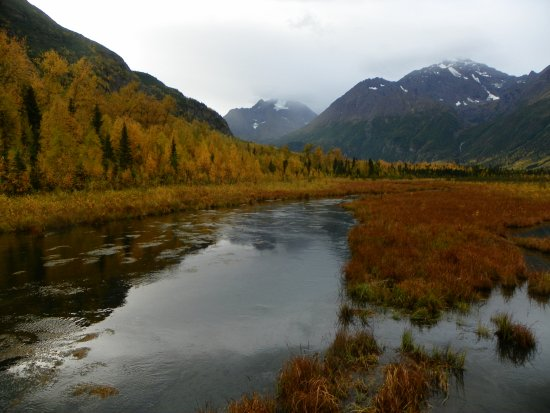 Eagle River, AK: Nature Trail