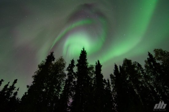 photo3.jpg - Picture of Wedgewood Resort, Fairbanks - TripAdvisor