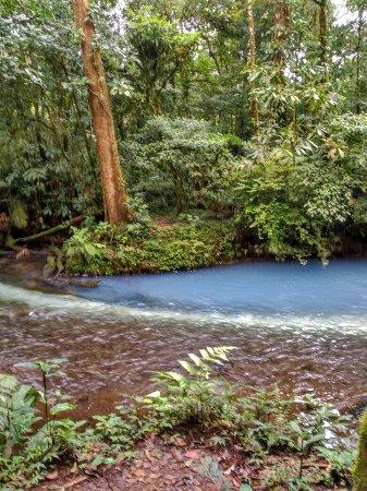 Tenorio Volcano National Park, Costa Rica: IMG_20160912_100621_large.jpg
