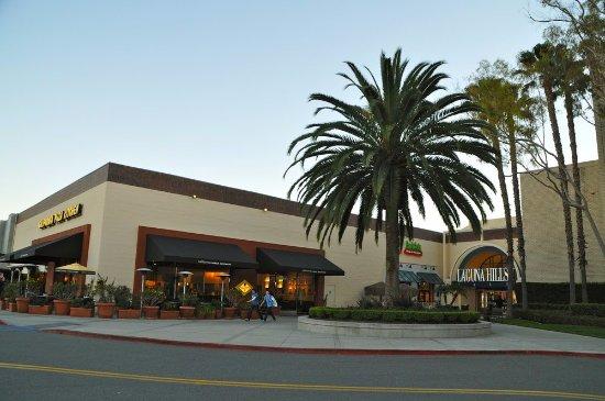 California Pizza Kitchen Palm Tree cpk - picture of california pizza kitchen, laguna hills - tripadvisor
