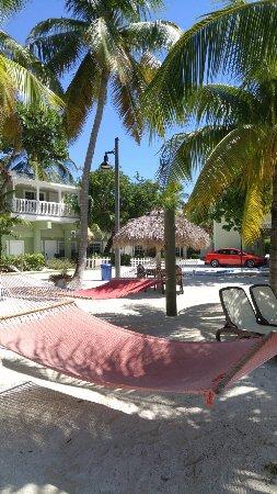 Long Key (Cayo Víbora), FL: 0916161432_large.jpg