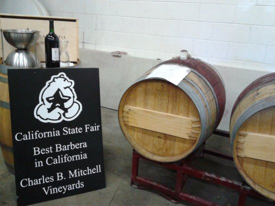 Fair Play, CA: Barrel tasting, Best Barbera