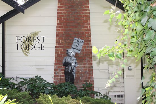 Forest Lodge Foto