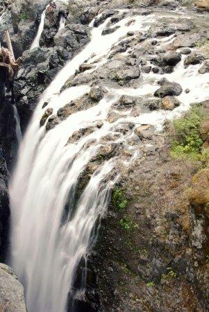 Nanaimo, Kanada: FB_IMG_1472527751200_large.jpg