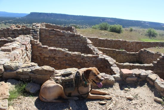 Ramah, Nuevo Mexico: Great exercised for you and your pet (or service dog) Make sure to bring plenti of water.