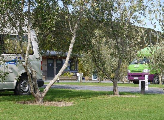 bay of islands campervan park now 152 was 1 6 4 updated rh tripadvisor co nz