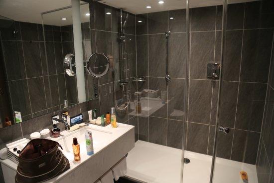 Hilton Vienna Plaza: Große Dusche, Kaum Abstellfläche Am Waschbecken