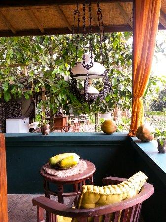 Penebel, Indonesië: The Bar
