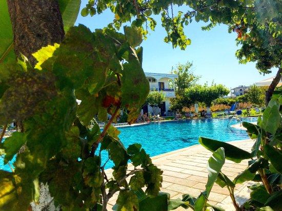 Παστίδα, Ελλάδα: photo3.jpg