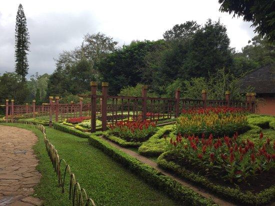 Maymyo Botanical Garden (National Kandawgyi Park): photo1.jpg