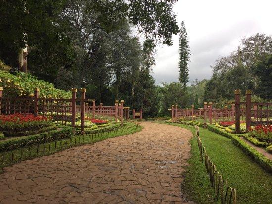 Maymyo Botanical Garden (National Kandawgyi Park): photo2.jpg