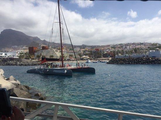 Freebird Catamarans: photo4.jpg