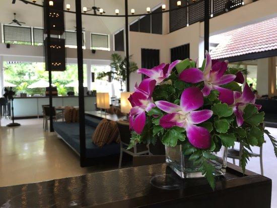 Lotus Restaurant : entrance