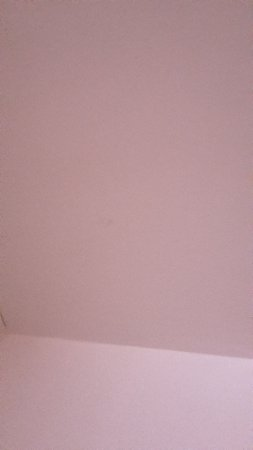 ZUZA Guest House: toile d'araigné dans la chambre