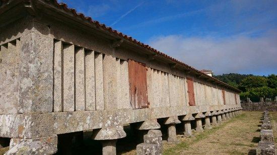Пойо, Испания: DSC_1066_large.jpg