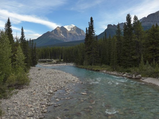 Lake Louise Campground: Bow River view