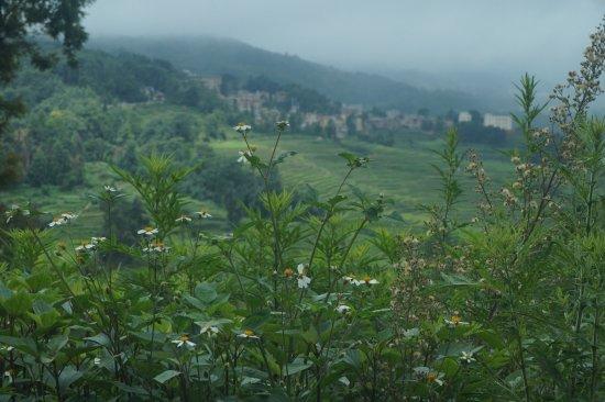 Yangyuan County, Κίνα: Indah dimana mana
