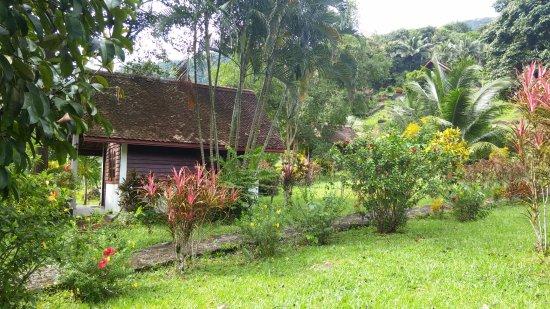 Phanom Bencha Mountain Resort: bangalow