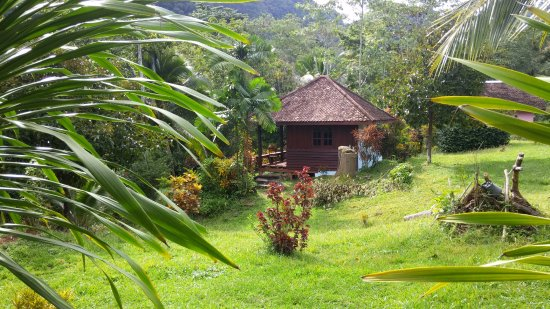 Phanom Bencha Mountain Resort: room