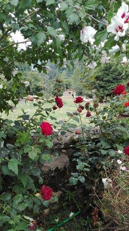Hotel Rural El Torrejon: Finca del hotel que llega hasta el Cares, un paraiso con un jardín impecable gracias a Carmen