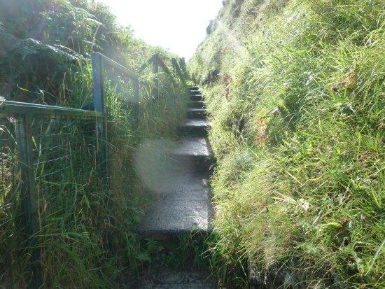 Ballycastle, UK: steps