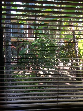 Bay Village Tropical Retreat: photo1.jpg