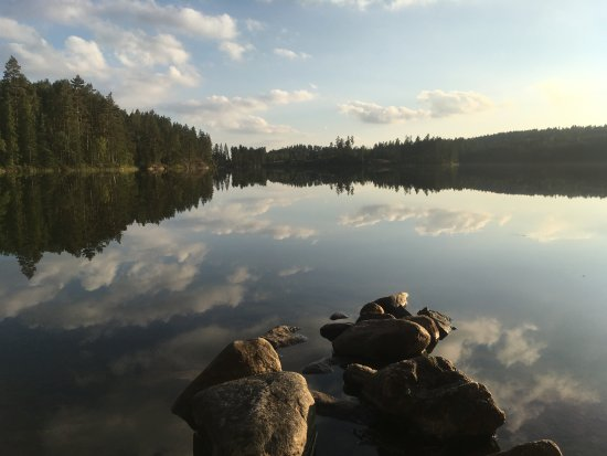 Arvika, Sverige: Just one picture of the stunning nature in Glaskogen National Park and surroundings
