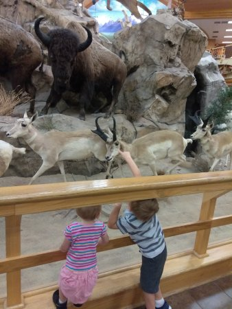 Dundee, MI : Children love all of the displays!