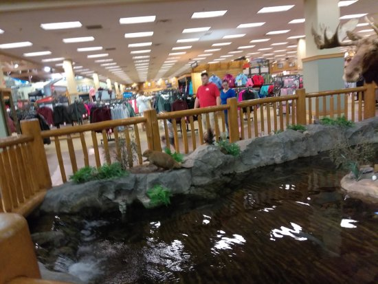 Dundee, MI: The trout stream...wish they allowed fishing poles!!