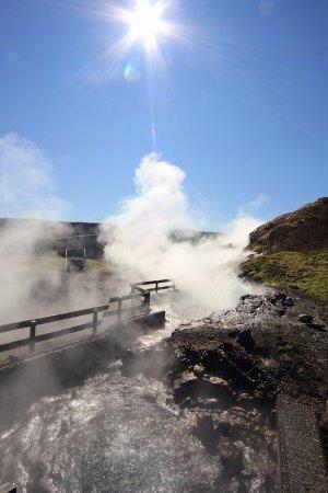 Reykholt, ไอซ์แลนด์: The sun was shining