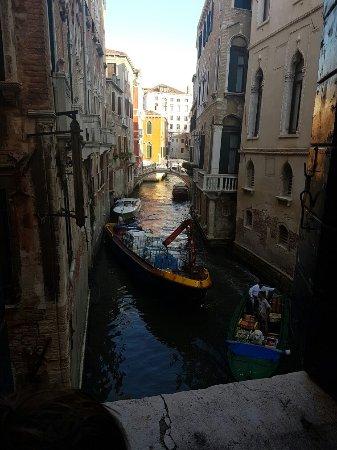 B&B Palazzo Minelli: 20160902_082125_large.jpg