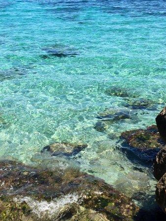 Riserva Naturale Orientata Di Capo Gallo: photo1.jpg