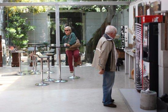 Muebles Indoor y Outdoor - Picture of Antoniucci Vivero Productor ...