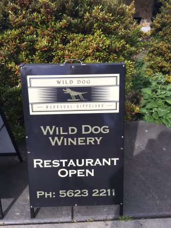 Wild Dog Winery Review