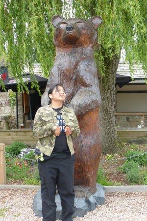 Oswestry, UK: Bear