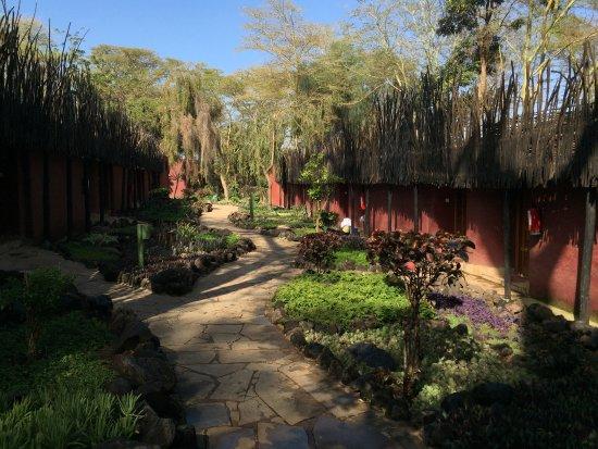 Amboseli Serena Safari Lodge: photo2.jpg