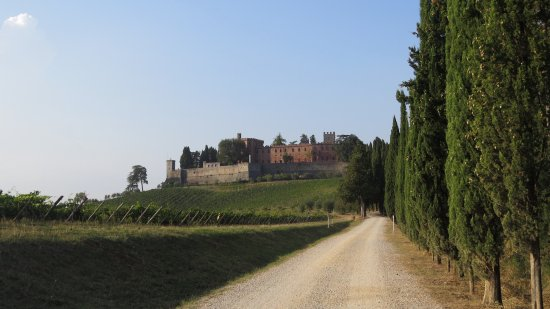 Tours Around Tuscany: A view of the castle from the vineyard