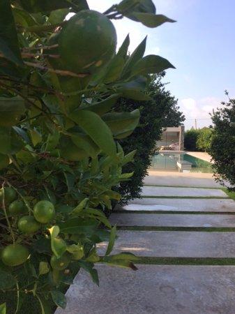 扎許鄉村精品飯店照片