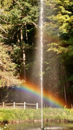 Glen Iris Inn: Fountain rainbow