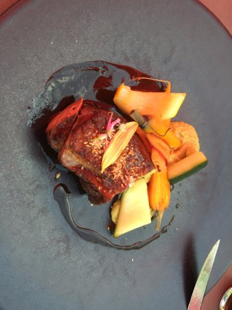 Lussac les Chateaux, Frankreich: Main - grilled duck breast