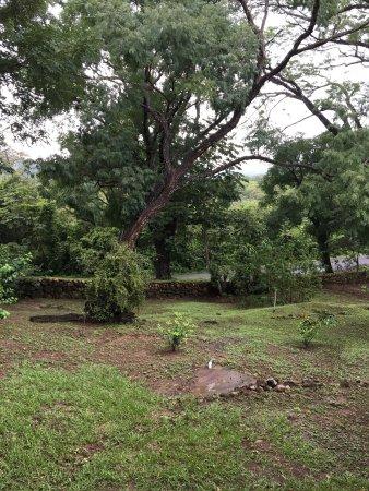 Hacienda Guachipelin: photo0.jpg