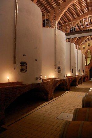Nulles, España: Tinajas de obra donde se elaboran los vinos y cavas Aderants.