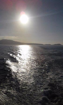 Los Cristianos Harbour: Coucher de soleil