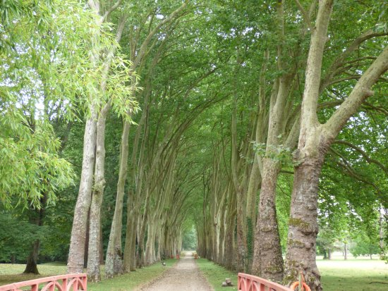 Richelieu, Francia: Une allée