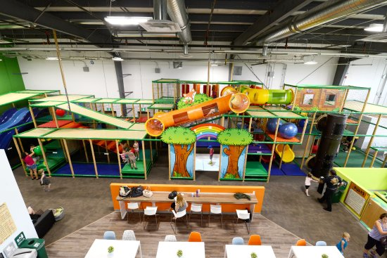 Flynn's Forest Indoor Playground