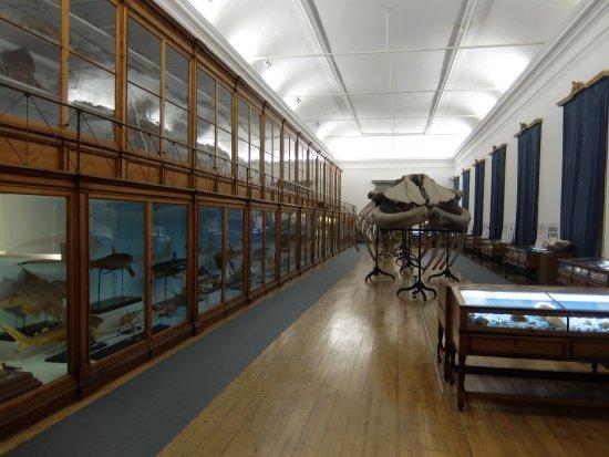 Cience Museum