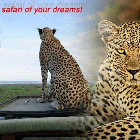 Johanesburgo, Sudáfrica: Safari with open Landrover