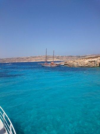 Bugibba, Malta: DSC_0236_large.jpg