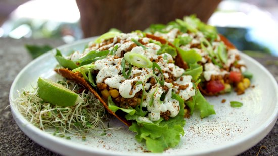 The Food Forest : Our Living Tacos