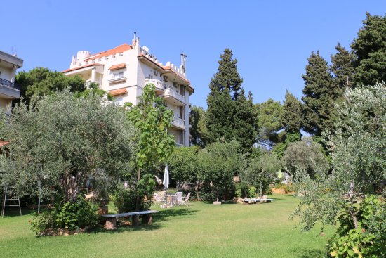 Le Chateau des Oliviers: Hotel and Garden